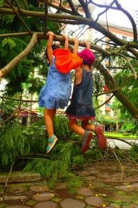 Rèn luyện thể chất bằng hoạt đông đu cây