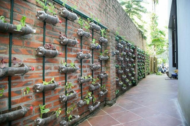 Vườn treo tái chế